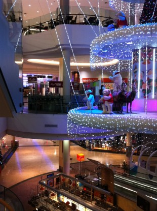 Dundrum Town Centre: a surprise visitor arrived last night while one woman was getting some shopping in.