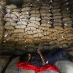 An Indian worker takes a rest on rice bags at a warehouse in Gauhati, India. Pic: AP Photo/Anupam Nath