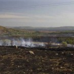 Gorse and forest still smoke after a day of fires near the beauty spot of Lough Cullin, Mayo.