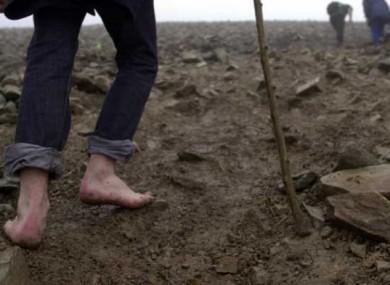 A barefoot pilgrim climbs Croagh Patrick on a previous Reek Sunday