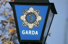 Two arrested over €600,000 drugs seizure in Portlaoise