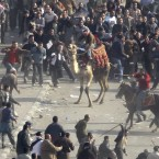 Pro-government demonstrators, some riding camels and horses and armed with sticks, clash with anti-government demonstrators in Tahrir Square in early February. (AP Photo/Ben Curtis/PA Images)