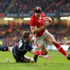 At the heart of a brilliantly dynamic Welsh display was the one back who doesn't cast a terrifying shadow. Halfpenny relies on good old fashioned intelligence, speed and skill to navigate his way to the try-line. Scored 22 of his country's 27 points.<span class=