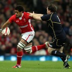 While Aaron Shingler did a fine job filling this jersey for Wales yesterday, mercilessly clearing John Barclay from a ruck to make quick ball for Leigh halfpenny's first try, Faletau was a colossus throughout. Without the ball he was impermeable, with it, utterly destructive.<span class=