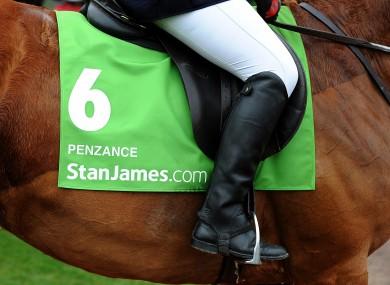 Detail view of StanJames.com branding on Penzance on Centenary Day, during the Cheltenham Festival.