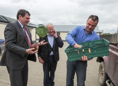 Shane McEntee demonstrates his cabbage-handling skills for field veg producers Charlie Kehoe and David Kehoe.
