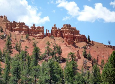 A canyon in Dixie National Forest, where Grover was stranded