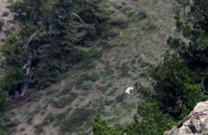 Mystery solved: the Utah 'Goat Man' reveals himself
