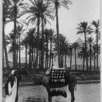 Village and palm trees by a lake with a pyramid in the distance. (Library of Congress, Prints & Photographs Division)