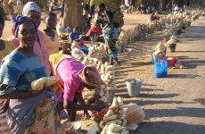 Women pushed further into poverty as food prices continue to rise – Oxfam
