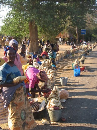 Zambian women sell sweet potatoes from the side of the road near Monz