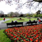 Arthur Guinness, brother of Edward and grandson of 'James's Gate' Arthur, bought St Stephen's Green in 1876, had it landscaped and made it a public park. Pic: Sasko Lazarov/Photocall Ireland