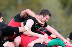 Guinness Series: Ryan hoping to knock the stuffing from the Springboks