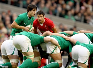 Mike Phillips studies a Conor Murray put-in at the Aviva Stadium.