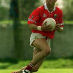 Ó hAilpín won three All-Ireland senior hurling medals as a player along with three Allstar awards. In football he was part of the Cork senior team who won league and Munster titles in 1999 but fell short in the All-Ireland final against Meath.