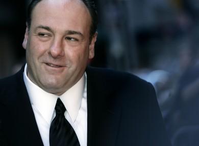 James Gandolfini in 2007