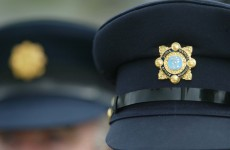 """""""The punishment must fit the crime"""" – Garda anger at remission for killer"""