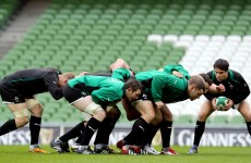 Scrum coach still to come for Ireland 'when we need it' — Plumtree