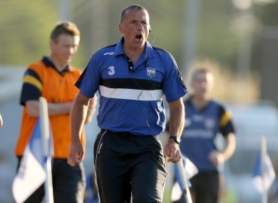 Waterford U21 hurling manager Peter Queally.