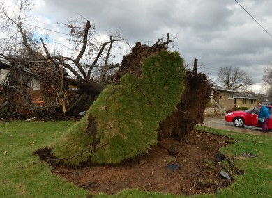 A tree was pulled out of the ground by the roots, collapsing onto a house after a tornado left a path of devastation through the north end of Pekin.