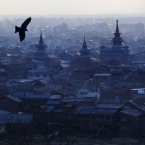 A bird flies over the city in Srinagar, India. <span class=