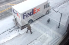Angry turkey chases helpless delivery driver around van
