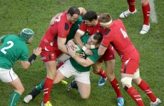'Everyone has had a part to play' – Healy lauds Ireland's collective spirit