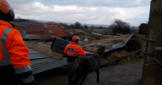 PICS: Horse sheds at animal sanctuary 'crushed like paper' in storm