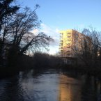 This anonymous photographer captured a cormorant over the bridge in UCC.