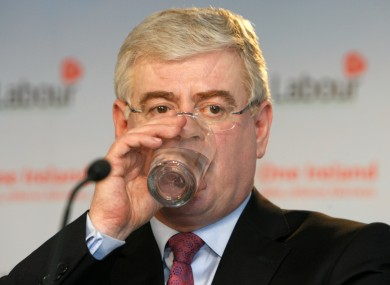 Labour leader Eamon Gilmore has faced a call to step down from one of his own MEP's today.