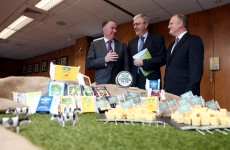 Irish Dairy Board opens $12m US cheese plant