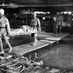 A British casualty being brought down the gangway from a steamer by Indian Army orderlies at Falariyeh, Mesopotamia. The Indian Expeditionary Force, consisting of both British and Indian units, advanced along the Tigris towards Baghdad in Summer 1915.<span class=