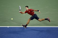 Novak Djokovic hit this brilliant point during his US Open win last night