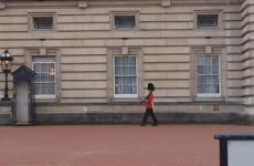 'Spinning' Buckingham Palace guardsman facing army investigation