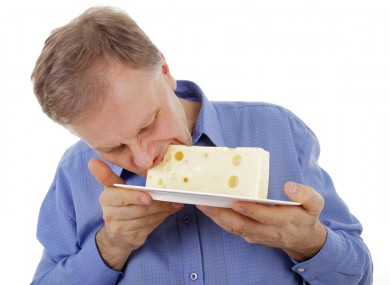 eat cheese