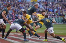 Fitness and spirit key to beating Wallabies, says 'Boks coach Meyer