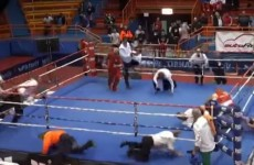 Boxer banned for life after 'brutal attack' on referee