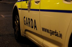 Seven-hour standoff between man and armed gardaí ends without injury
