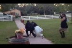 Bride and groom's wedding entrance fails in the most spectacular fashion