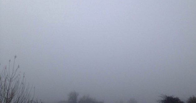 Foggy morning: Be really, really careful out there