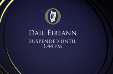 Dáil suspended three times in just one hour as Sinn Féin reacts angrily to sex abuse comments