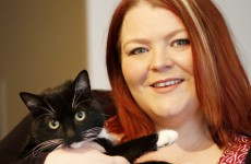 This woman wants your help so she can open Ireland's first cat café