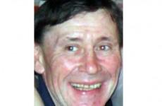 Boy (13) admits murdering Irish man in row over party