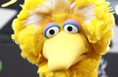 This real-life story about Big Bird will make you cry