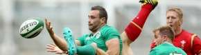 Concern for Earls as Schmidt's Ireland come up short against Wales