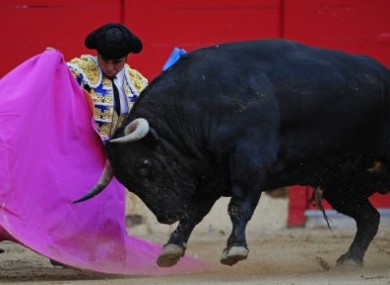 File photo of bullfighter Francisco Rivera Ordonez.