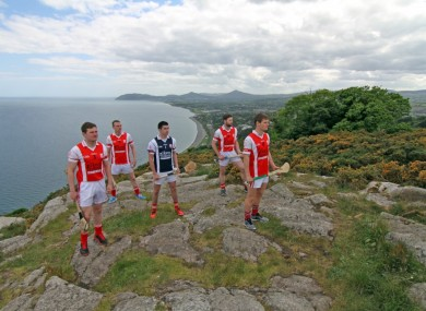 Some of the Cuala Senior hurling players.