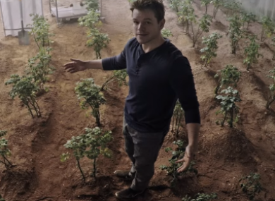 Matt Damon's character in The Martian managed to cultivate potatoes on the red planet.