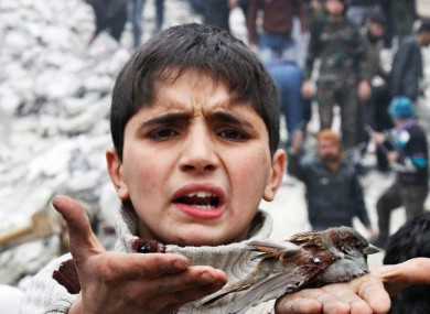 File photo of a Syrian boy holding a bird he said was injured in an airstrike in Aleppo.