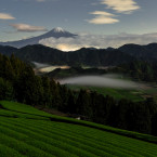 Photo and Caption by kousuke kitajima/2016 National Geographic Nature Photographer of the Year<span class=